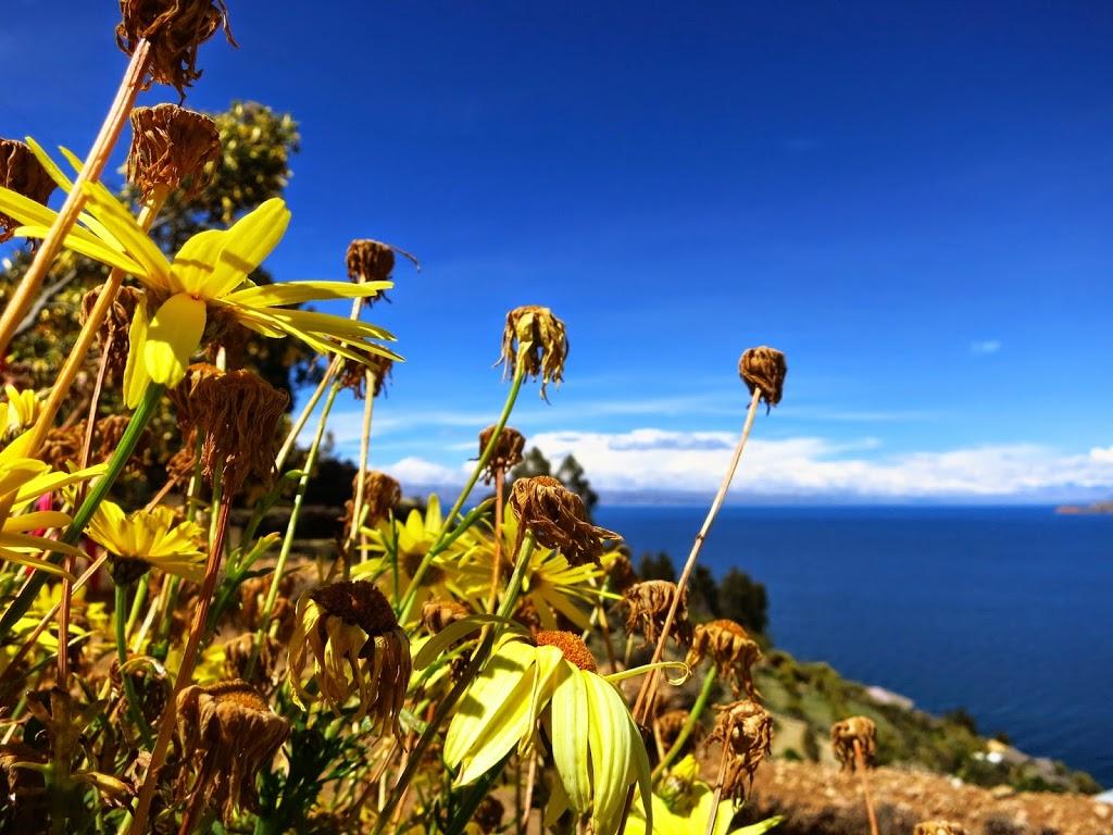 Bolivien Isla del Sol Aussicht