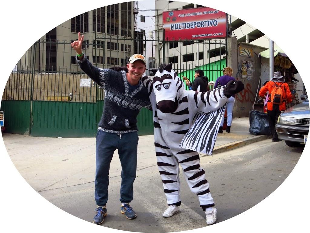La_Paz_Zebra