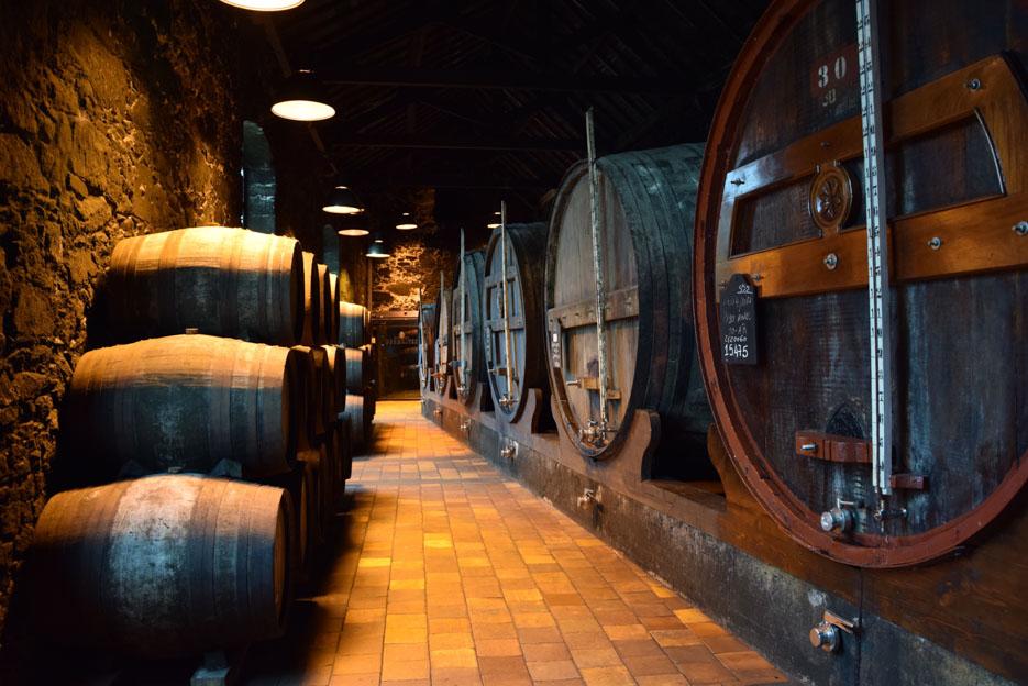 Portwein Porto calem besichtigung