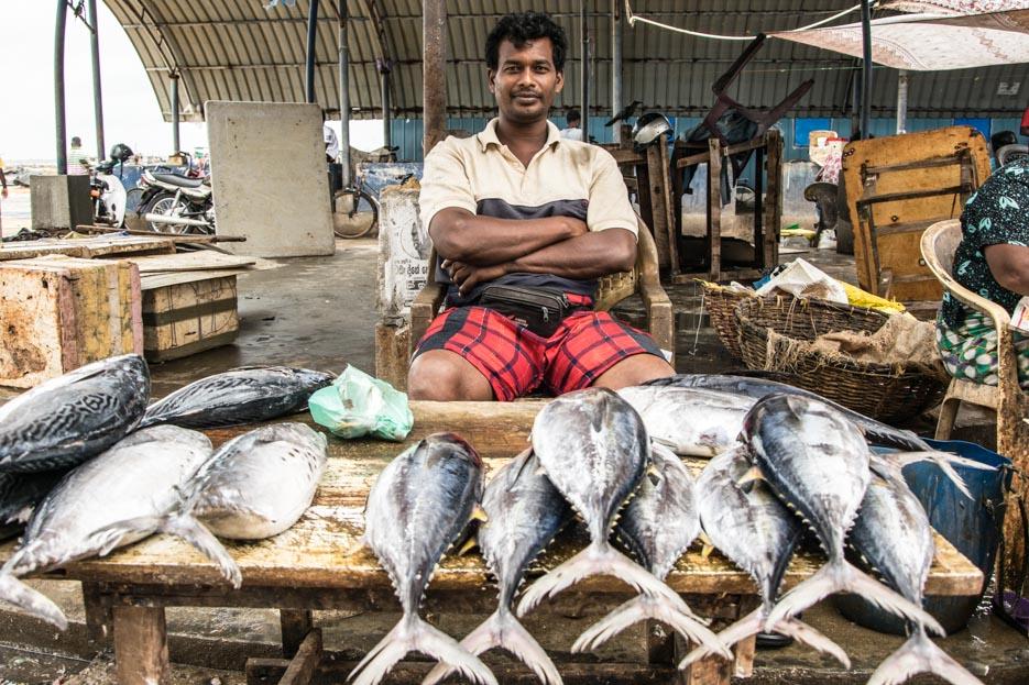 sri_lanka_negombo_fish market