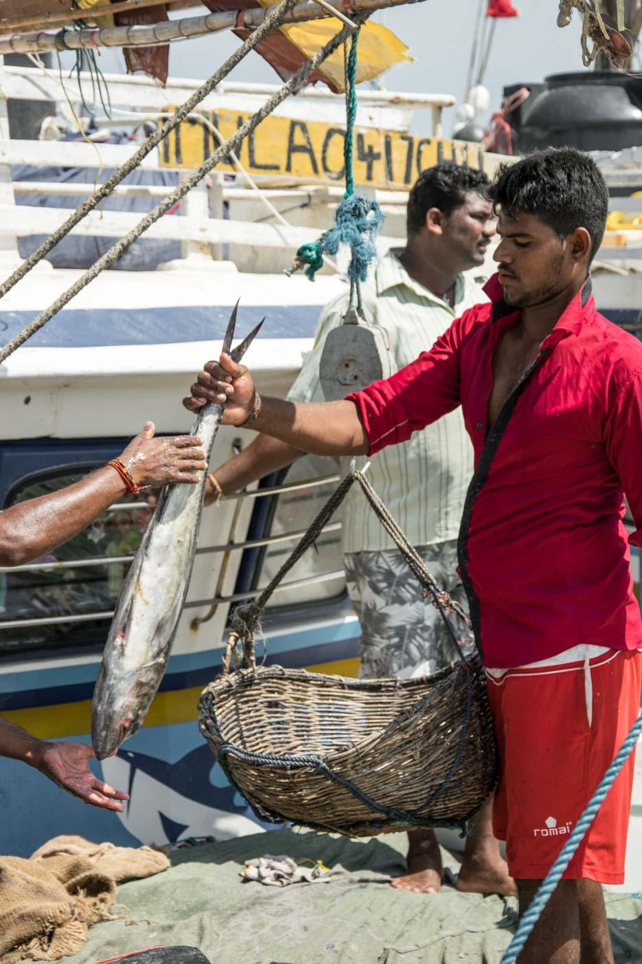 srilanka jaffna reisebericht-20