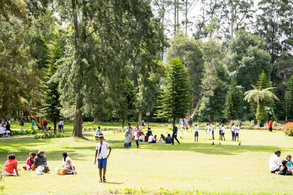 sri-lanka-nuwara-eliya-victoria-park-hochland