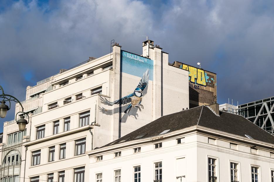 streetart bruessel belgien vogel