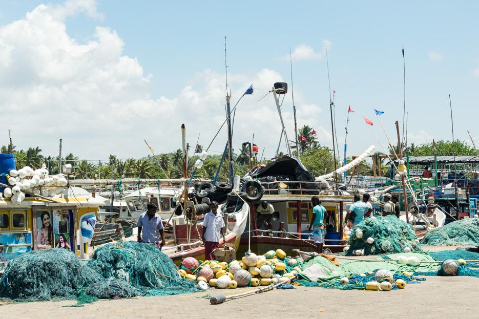 Hafen Fisch Boote Mirissa Sri Lanka
