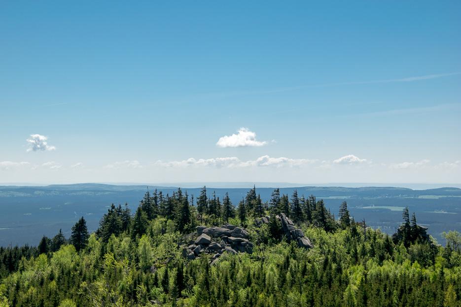 Leistenklippe Harz Ausblick Wald Brocken