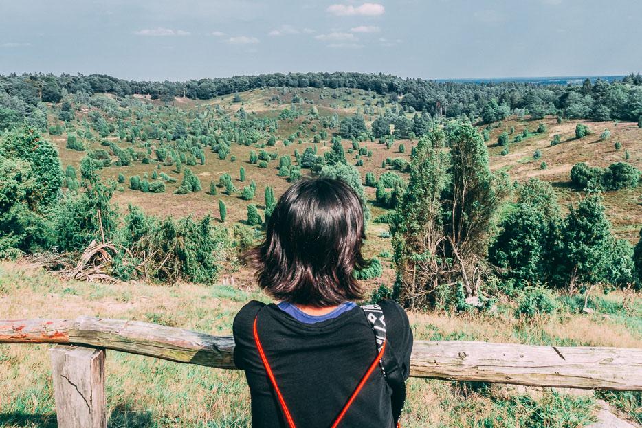 Totengrund Lüneburger Heide Wandern Urlaub