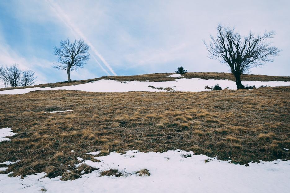 puchberg schneeberg wanderung tipps winter