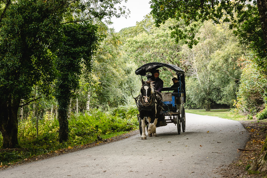 killarney nationalpark kutschfahrt kerry way irland