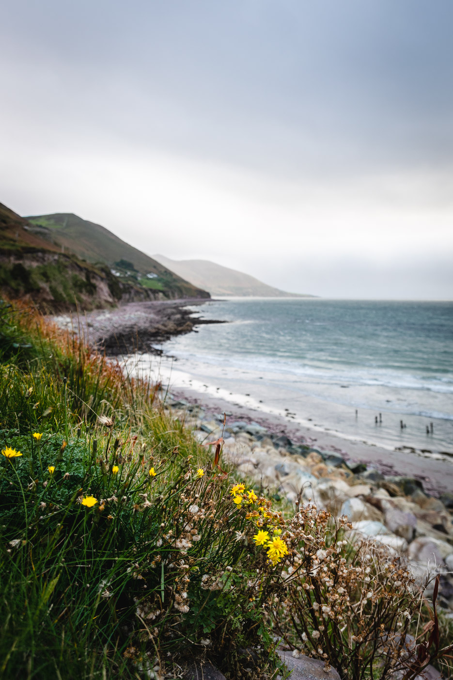 Glenbeigh Rossbeigh Beach Irland Kerry Way