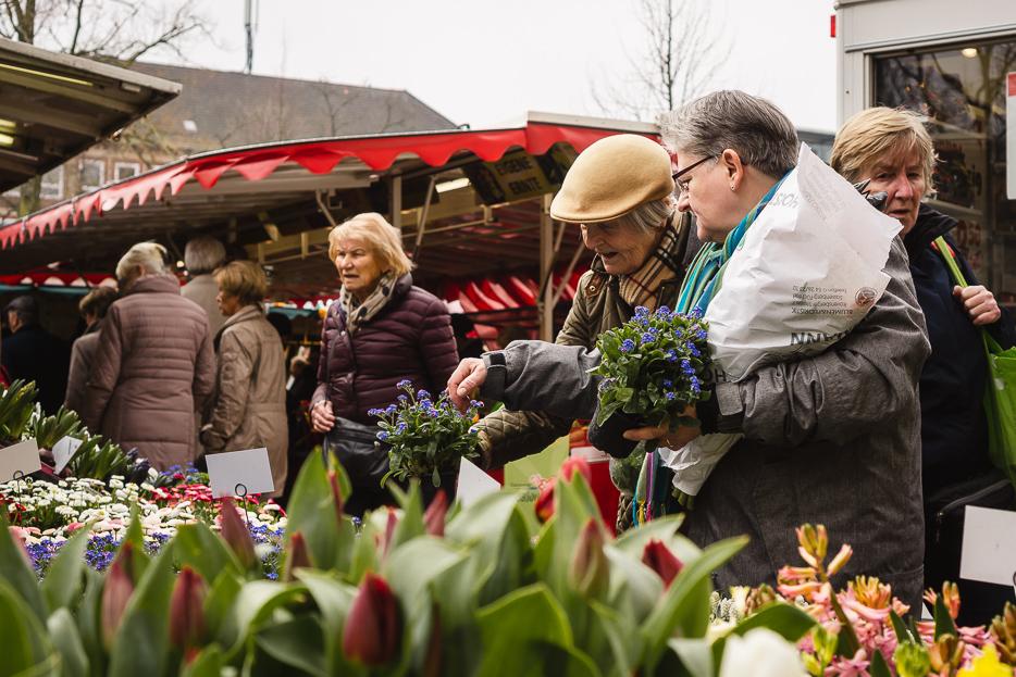 münster markt