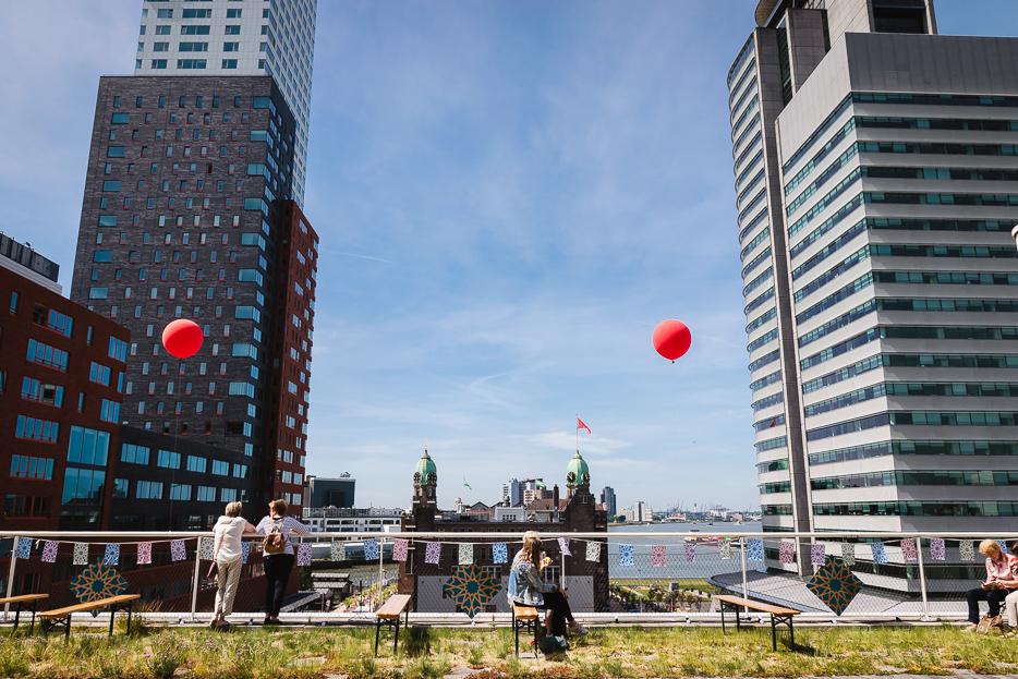 rotterdamse dakendagen aussicht hotel new york