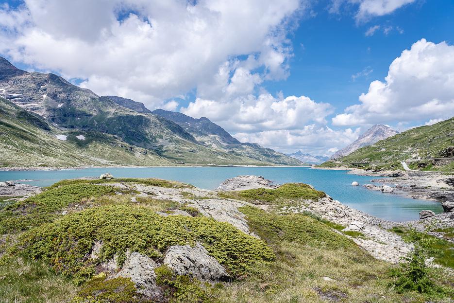 lago bianco ospizio bernina